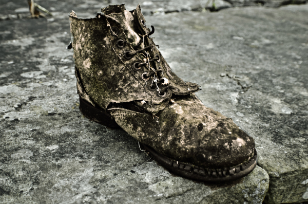 the-old-shoe